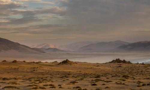 Zdjecie CHILE / środkowe Chile/Atacama / Park Narodowy Pan de Azucar / Piekny koniec dnia