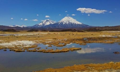 Zdjecie CHILE / Arica y Parinacota / Park Narodowy Lauca / Wulkan Pinaracota z wulkanem Pomerape w tle