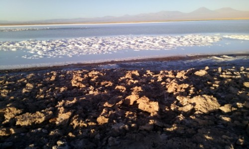 Zdjecie CHILE / Atakama / Laguna Cejar / CHILE I BOLIWIA - SAMOTNIE I INTENSYWNIE