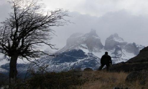 Zdjecie CHILE / Patagonia / Park Torres del Paine / torres del pain