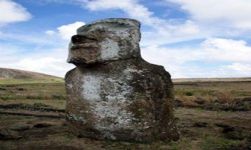 Zdjecie CHILE / Rapa Nui / Tongariki / Podróżnik