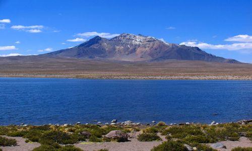Zdjecie CHILE / Parque Nacional Lauca / Parque Nacional Lauca / Parque Nacional Lauca