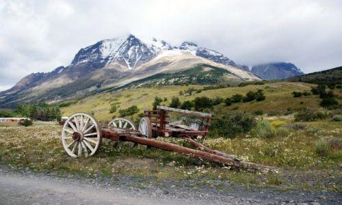 Zdjecie CHILE / Magallanes / Park Narodowy Torres del Paine / Tylko koni brak:)