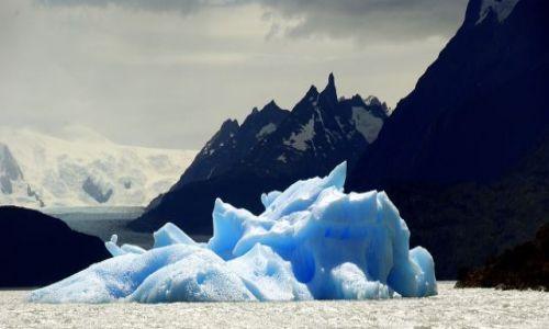 Zdjecie CHILE / Magallanes / Park Narodowy Torres del Paine / Lodowiec Grey ... w częściach pierwszych..