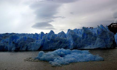 Zdjęcie CHILE / Magallanes / Park Narodowy Torres del Paine / Lodowiec Grey