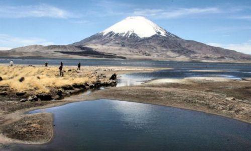 Zdjecie CHILE / polnocne chile / park Lauca / pod wulkanem