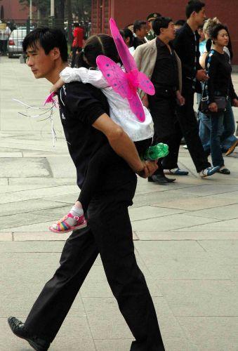 Zdjęcia: pekin, motyl ze zwichniętym skrzydłem, CHINY