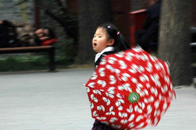 Zdj�cia: pekin, taniec z parasolem, CHINY