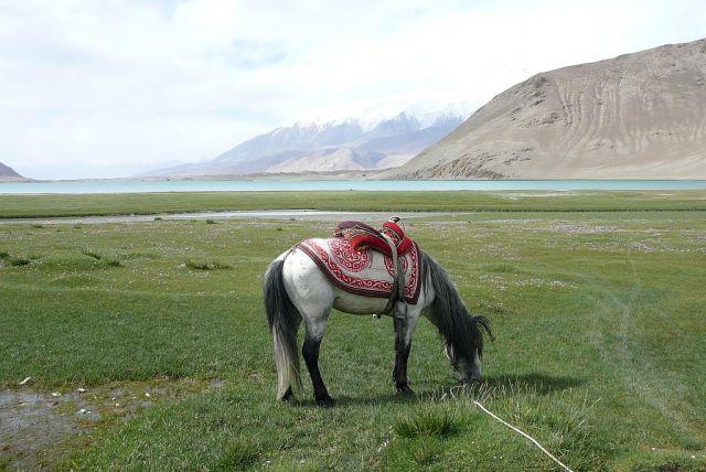 Zdjęcia: Muztagh Ata, Karakorum Highway, pod Muztagh Ata, CHINY
