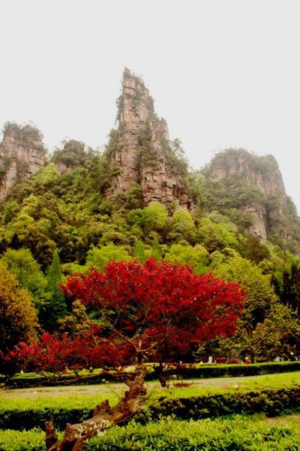 Zdjęcia: Zhangjiajie, Hunan, wiosna czy jesień , CHINY