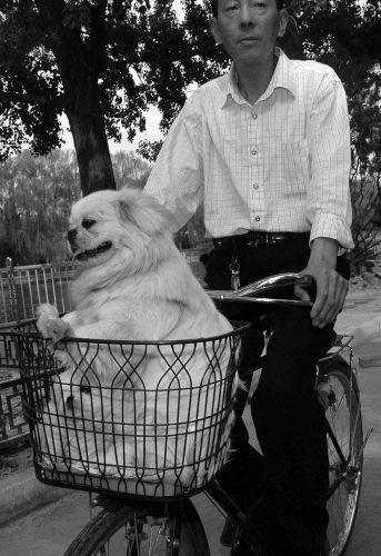 Zdj�cia: pekin- w hutongach, chiny- portrety (a w�a�ciwie podw�jny, a w�a�ciwie p�tora :), CHINY