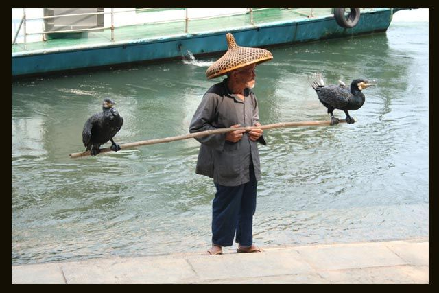 Zdjęcia: Yangshuo, pan na rybki ? nie ... na rybki .... , CHINY
