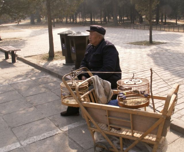 Zdjęcia: Pekin, Spacer po Pekinie, CHINY