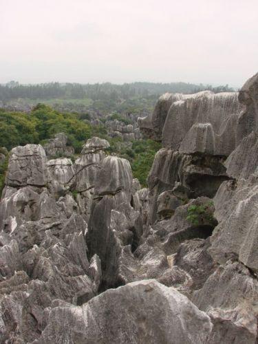 Zdjęcia: Kunming i okolice, Kamienny Las (orientacja pionowa:), CHINY