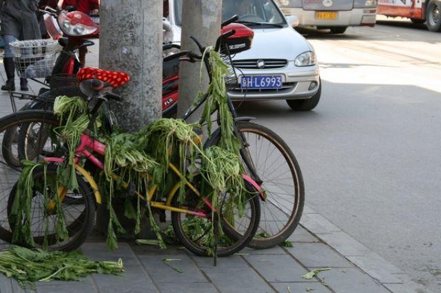 Zdj�cia: Pekin, hm...:), CHINY