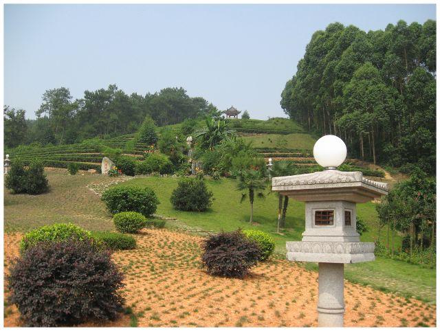 Zdjęcia: Okolice Chengdu, Chiny środkowe, Ogród herbaciarni, CHINY