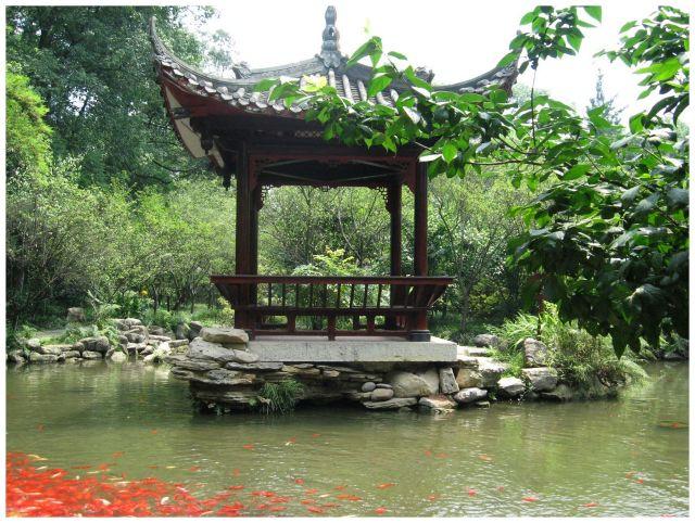 Zdjęcia: Leshan, Prow.Sichuan, Czerwone rybki, CHINY
