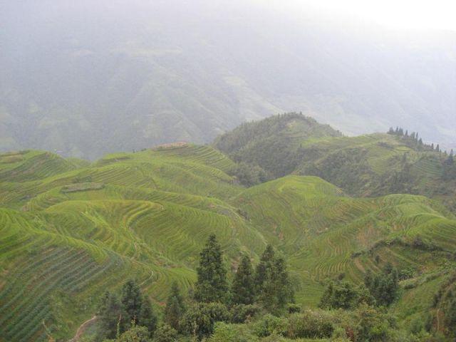 Zdjęcia: Longji okolice Guilin, Tarasy ryżowe Longji, CHINY