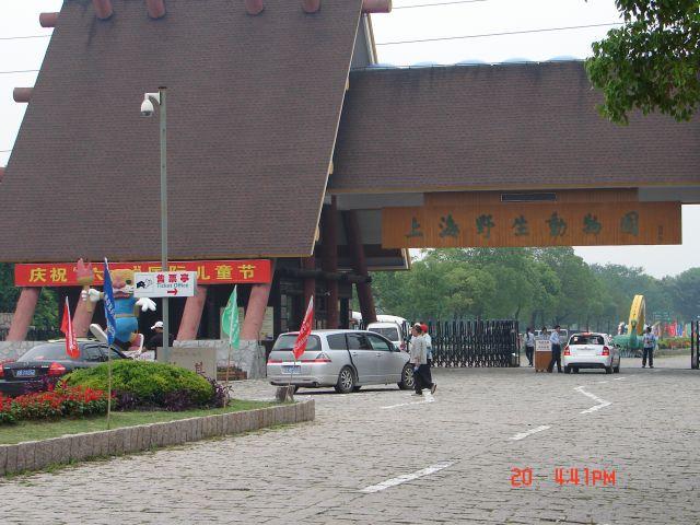 Zdjęcia: Szanghaj ZOO, Szanghaj  zoo -wejscie -,1 h od Szanghaju ,trudno znalezc ,nawet dla chinki, CHINY