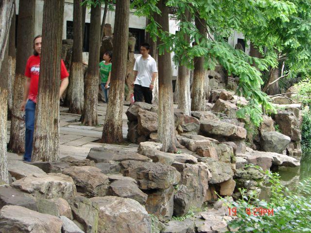 Zdjęcia: Szanghaj, Szanghaj , Miedzy drzewami, CHINY