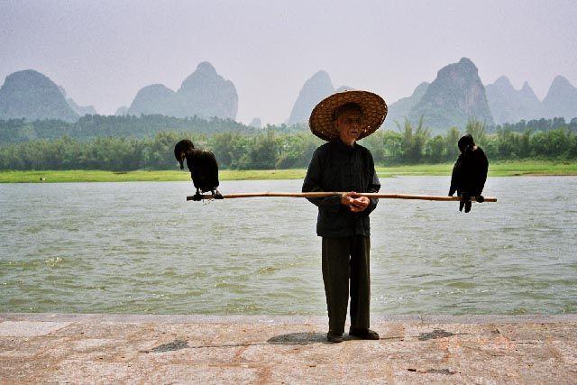 Zdj�cia: Jangshuo, Guangxi, rybak, CHINY