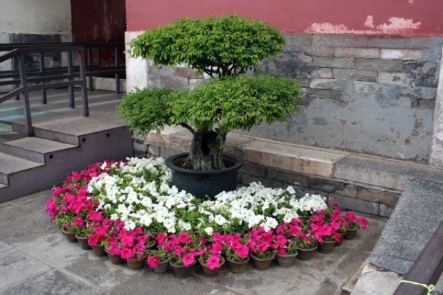 Zdjęcia: Grobowce z dynastii Ming, W Pekinie, CHINY
