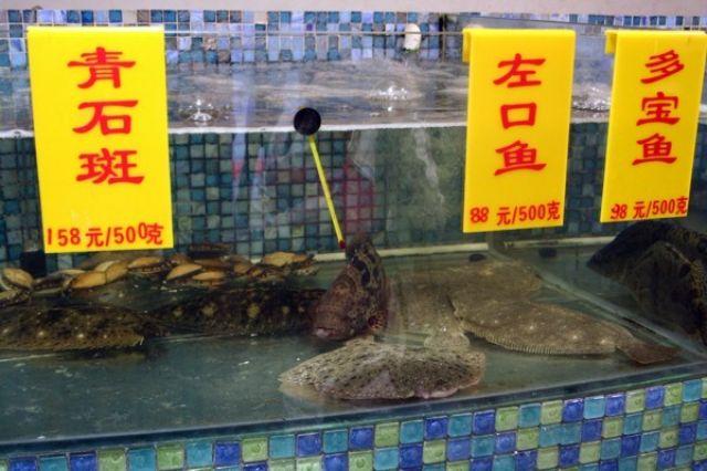 Zdjęcia: PEKIN, Wybierz co chcesz zjeść, CHINY