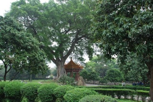 Zdj�cia: Gongye Road, Fuzhou, Xichan Buddhist Temple, CHINY