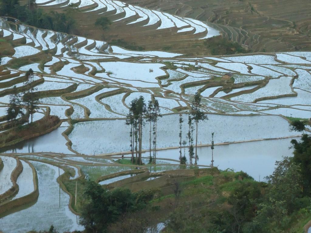 Zdjęcia: okolice Xinjie, Yunnan, Tarasy ryżowe Bada (2), CHINY
