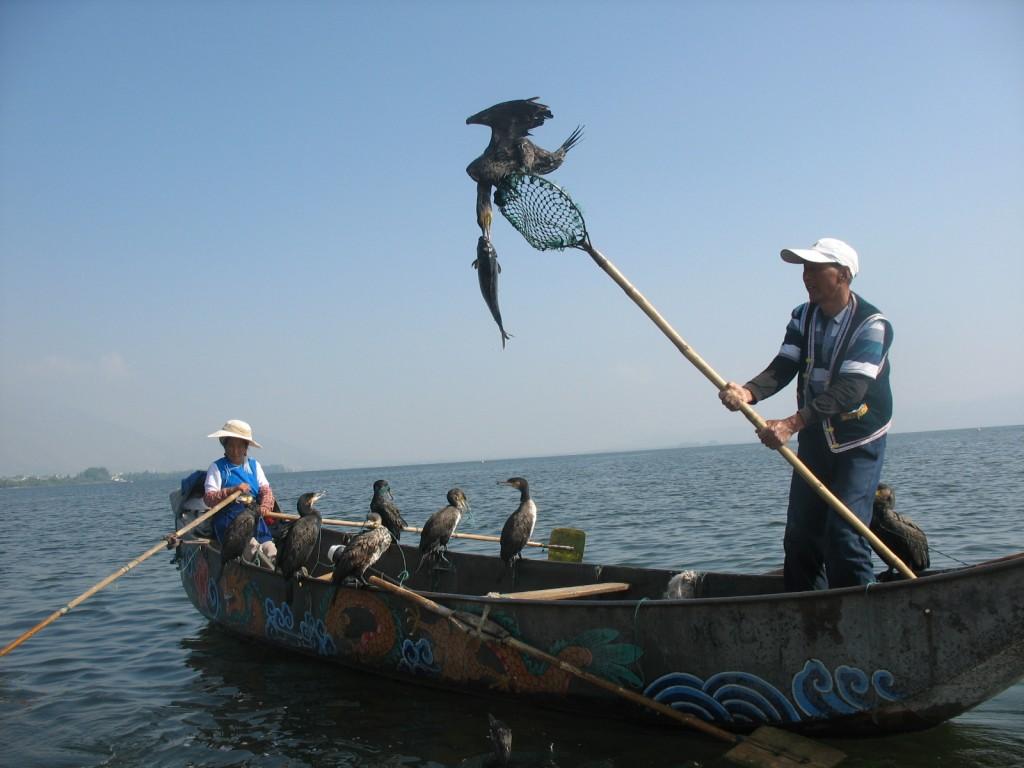 Zdjęcia: Er Hu, Yunnan, Rybacy, CHINY