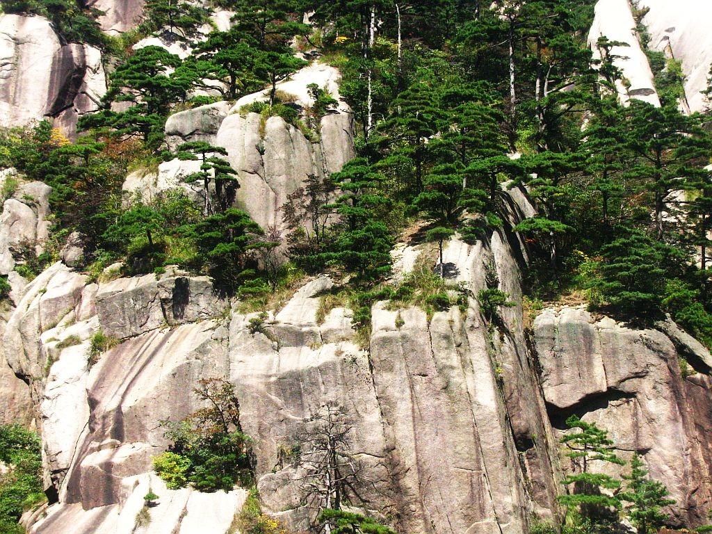 Zdjęcia: Huang Shan, prowincja Anhui, sosny i skały, CHINY