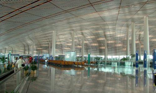 Zdjecie CHINY / - / Pekin / Lotnisko w Pekinie