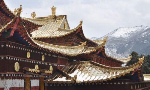 Zdjęcie CHINY / Gansu / Langmusi / Złote dachy