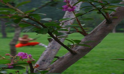 Zdjecie CHINY / - / okolice Luoyang / Mnich w klasztorze Shaolin