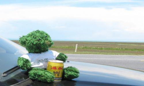 Zdjęcie CHINY / Jezioro Qinghai / przy drodze / Misio się wzmacnia