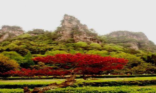 Zdjecie CHINY / Hunan / Zhangjiajie / wiosna czy jesień
