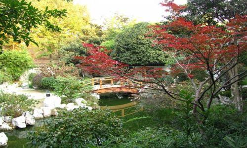 Zdjęcie CHINY / prowincja Jiangsu / Nankin / pałac prezydencki ogrody