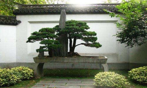 CHINY / prowincja Zhejiang / Hangzhou / świątynia Yue Feia