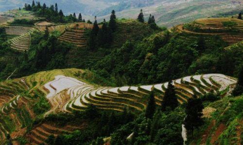 Zdjecie CHINY / Gulin / W wiosce / Tarasy ryżowe