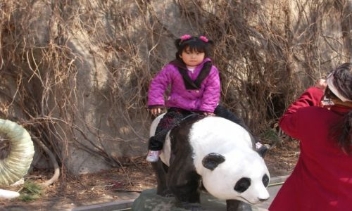 Zdjęcie CHINY / Beijing / Bejing Zoo / Konkurs: Kobieta w obiektywie podróżnika