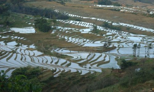 CHINY / Yunnan / okolice Xinjie / Tarasy ryżowe Bada
