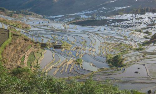 Zdjecie CHINY / Yunnan / okolice Xinjie / Tarasy ryżowe Duoyishu (2)