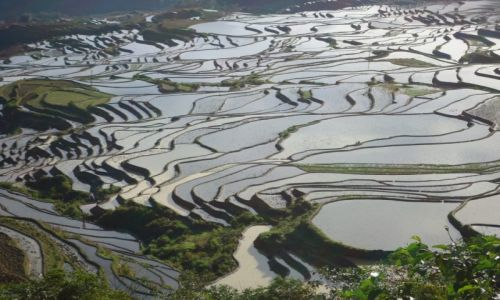CHINY / Yunnan / okolice Xinjie / Tarasy ryżowe Duoyishu (3)