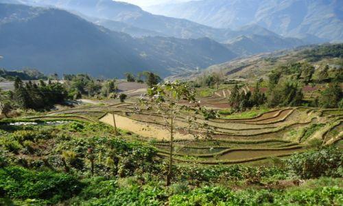 Zdjecie CHINY / Yunnan / okolice Xinjie / Poletka ryżowe w okolicach Xinjie
