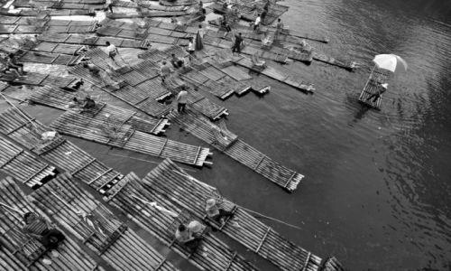 Zdjęcie CHINY / Guangxi / Guilin / Tratwy