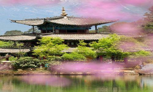 Zdjecie CHINY / Yunnan / Lijiang / Park Stawu Czarnego Smoka