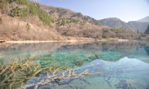 Zdjęcie CHINY / Syczuan / Jiuzhaigou / Pocztówka z Jiuzhaigou