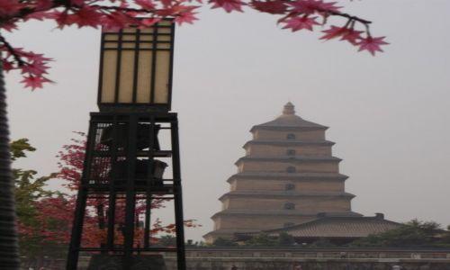 CHINY / Xi'an / Xi'an Muzeum Terakotowych Wojowników / Xi'an Pagoda
