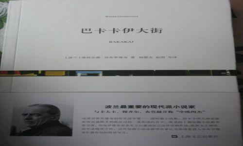 Zdjecie CHINY / Mongolia Wewnętrzna / Bajan Chot / Co czytają Chińczycy 2