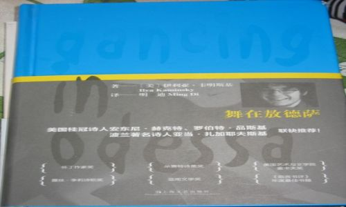 Zdjecie CHINY / Mongolia Wewnętrzna / Bajan Chot / Co czytają Chińczycy 3